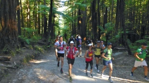 Running in the glorious Redwoods